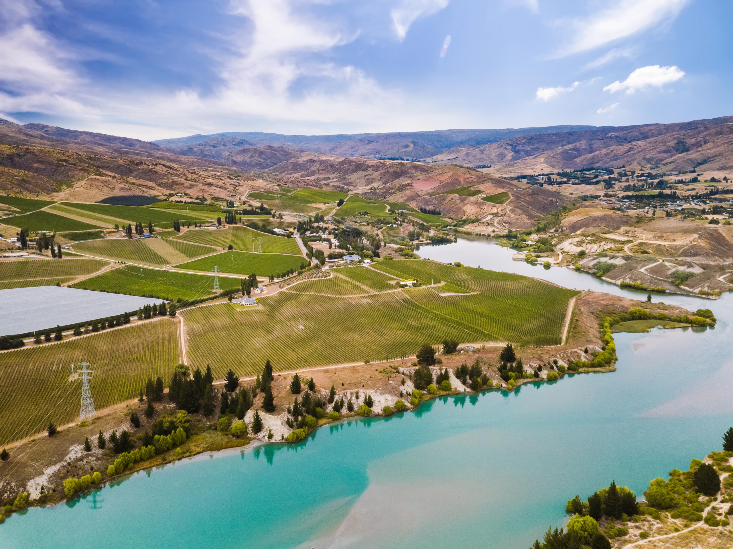 Iconic Central Otago winery Carrick up for sale